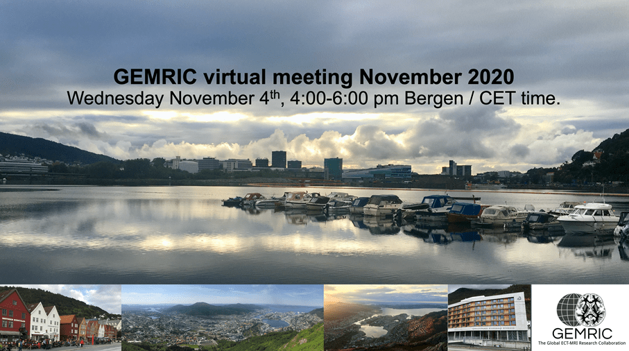 GEMRIC Virtual Meeting November 2020